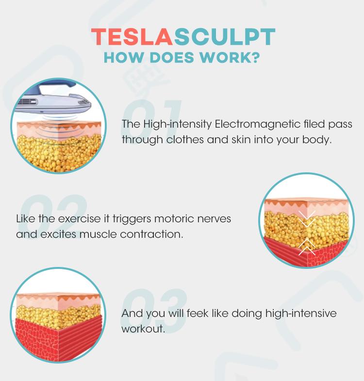 Vetical Teslasculptor
